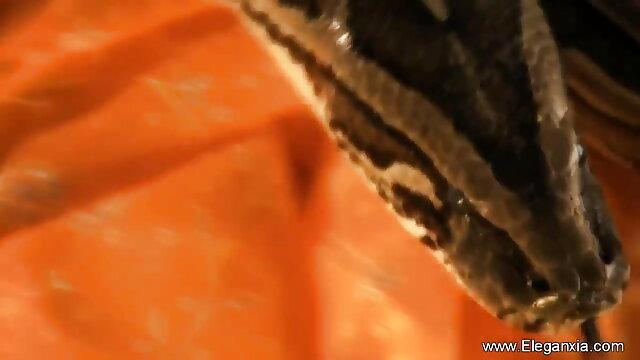 సెక్సీ బ్లోన్దేస్